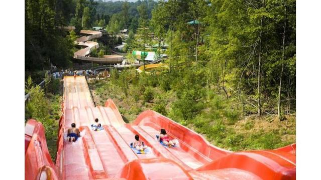 Dollywood's Splash Country to host 'World's Largest Swimming