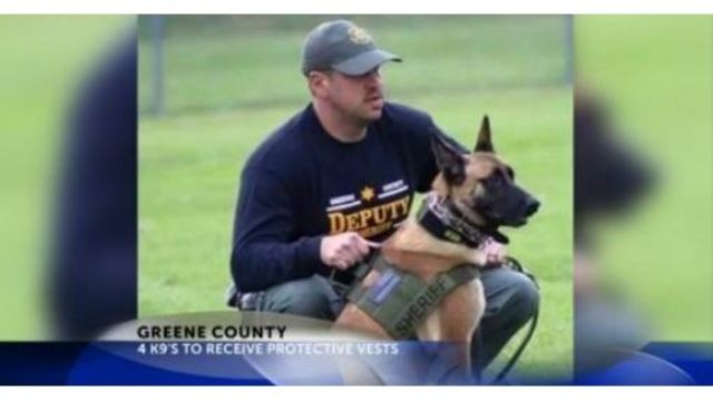 Four Greene County Sheriff's Office K-9's receiving new protective vests