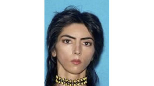 'Vegan Bodybuilder': How YouTube Attacker, Nasim Aghdam, Went Viral in Iran
