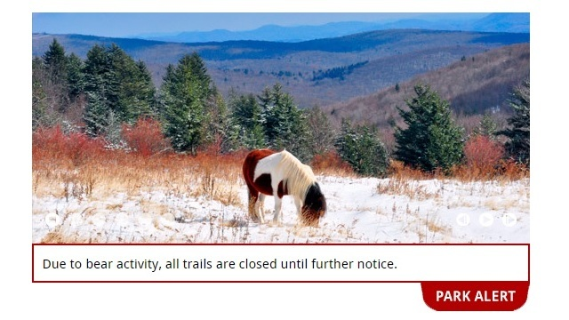 Grayson Highlands State Park trails closed until further notice 'due